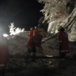Bäume blockierten die Strasse Richtung Stockenbaum und Neuhaushof